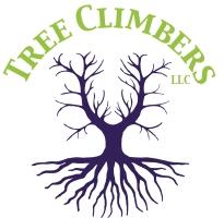 Tree Climbers LLC | Fayetteville, AR