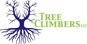 Tree Climbers Tree Services